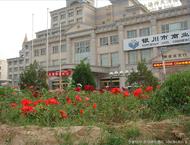 Study in Ningxia