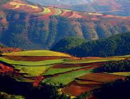 Study in Yunnan